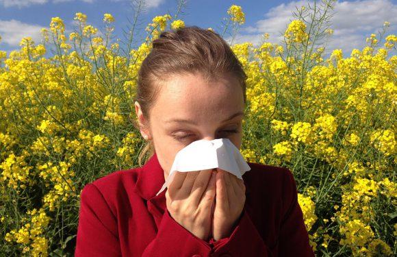 Alergicy na specjalnych prawach